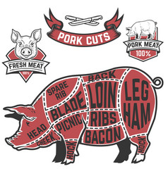 Pork cuts butcher diagram cow on white background vector