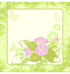 Floral background ipomoea vector