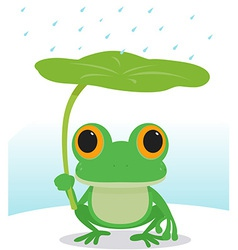 frog in the rain vector image