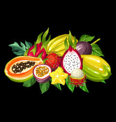 Exotic tropical fruits collection of vector