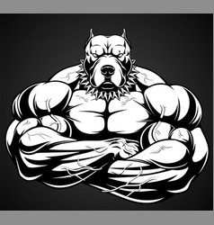 angry dog bodybuilder vector image