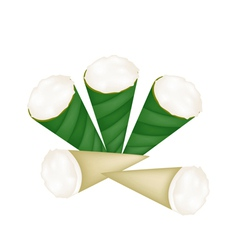 Coconut Custard in Banana Leaf Cone vector image