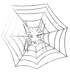 Grunge spider in the web on a vector