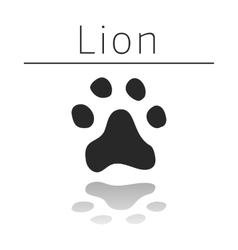 Lion animal track vector