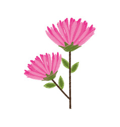 Pink flower spring image sketch vector