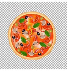 pizza isolated vector image vector image