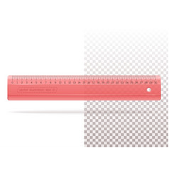 Transparent plastic red ruler for school or office vector