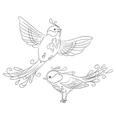 Two isolated fantasy birds in different poses vector image