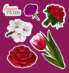blooming flowers collection vector image