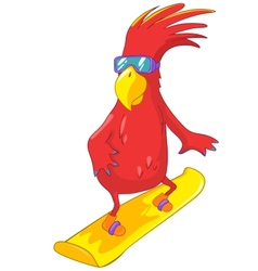 Funny parrot snowboarding vector