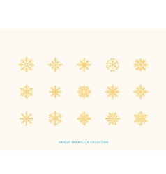 Snowflake collection vector