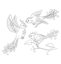 Three isolated fantasy birds in different poses vector