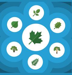 Flat icon natural set of alder hickory acacia vector