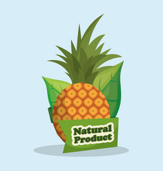 Pineapple natural product market label vector