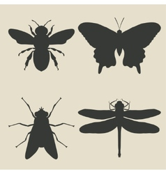 Insects icon set vector