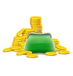 Purse and gold coins cash vector