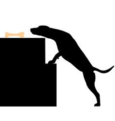 Dog steals bone vector