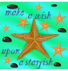 Orange starfish and stones poster vector