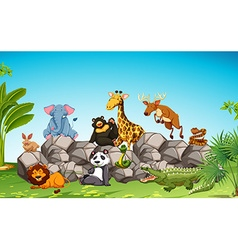Wild animals sitting on the rock vector image