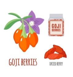 Superfood goji berries set in flat style vector