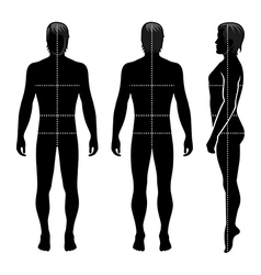 Fashion man full length template figure silhouette vector image