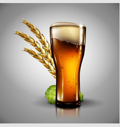 Beer background highly realistic with the effect vector