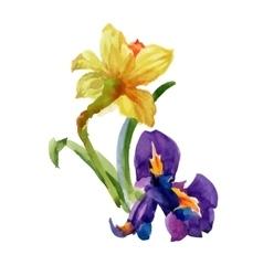 Watercolor summer garden narcissus blooming flower vector