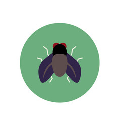 stylish icon in color circle fly insect vector image