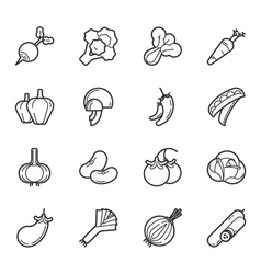 Set of vegetables and fruits icons  eps10 vector