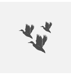 Flying ducks in grayscale vector