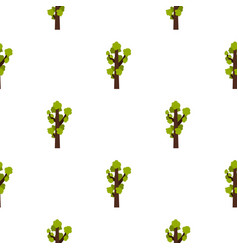 Tall tree pattern flat vector
