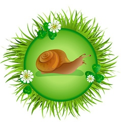 Snail crawling on the meadow vector