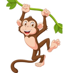 Cute monkey animal hanging on a vine vector
