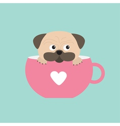 Pug dog mops paw sitting in pink cup with heart vector