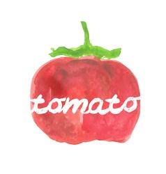 Watercolor pear tomato vector