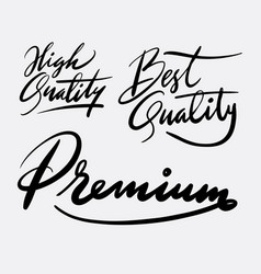 high quality and premium hand written typography vector image