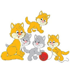 Cat and little kittens vector
