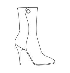 Demi tall womens boots high heeldifferent shoes vector