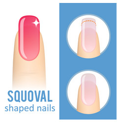 Nail shape squoval vector