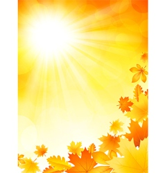 Bright autumn background vector