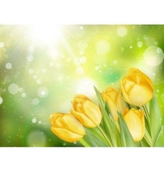 Pastel spring tulips border eps 10 vector
