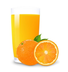 Orange Juice Background vector image