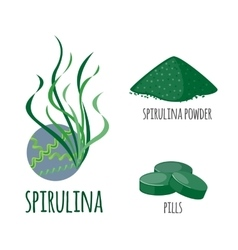 Superfood spirulina set in flat style vector image