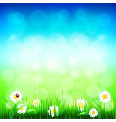 Green grass and blue sky with flowers vector