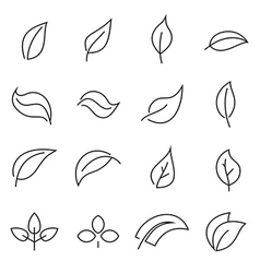 Abstract linear leaf icons vector image
