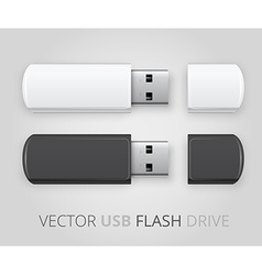 An isolated usb pen drive vector