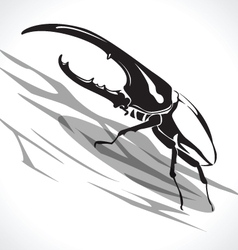 beetle 2 vector image vector image