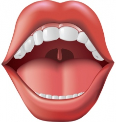 open mouth vector image