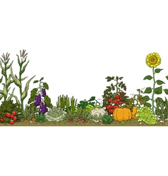 Vegetable garden bed vector