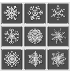 Set of beautiful paper snowflakes vector image vector image
